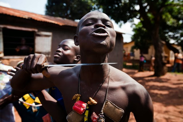 Image result for mad dog central african republic