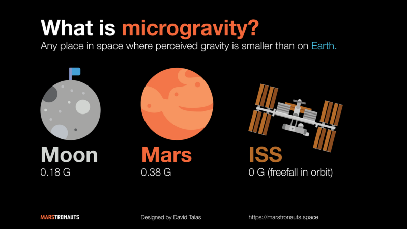 Introduction to the Effects of Microgravity on the Human Body